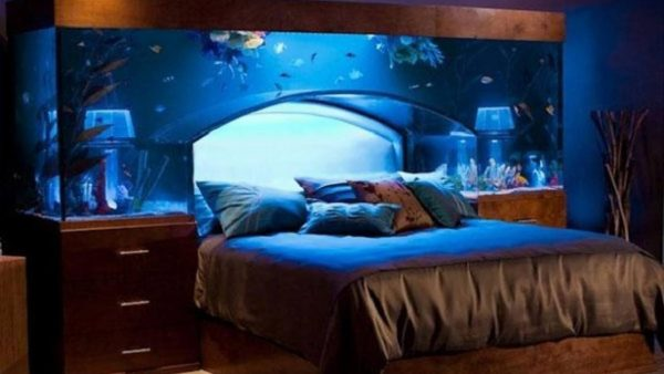 Clever Bedroombedroom Themes For Guys Cool Tweens Decorating Medium