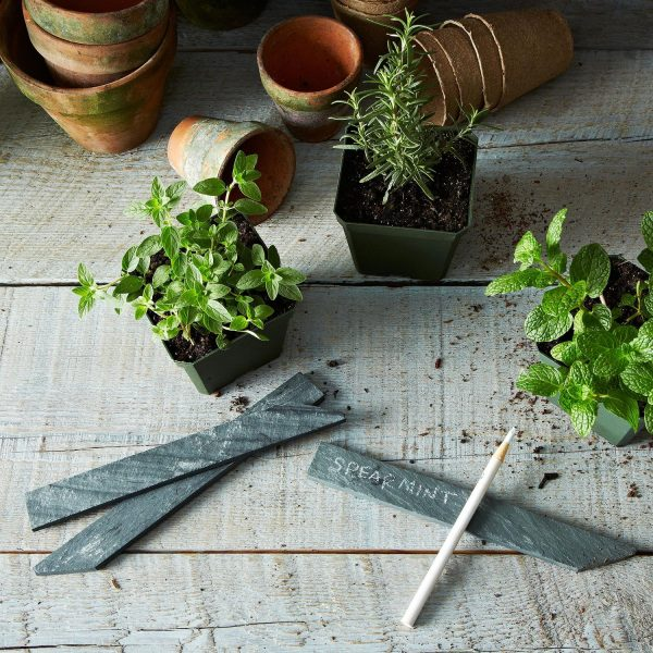Creative Slate Garden Markers Set Of 4 On Food52 Medium