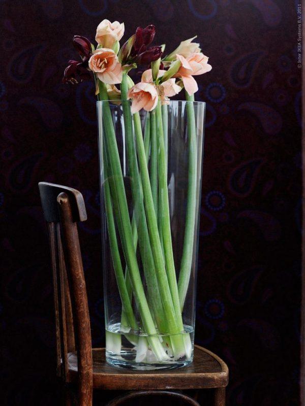 Style Bladet Vase Clear Glassstems Glass Vase And Vase Medium