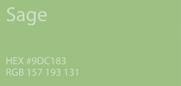 Bore 24 Shades Of Green Color Palette  Graf1xcom Medium