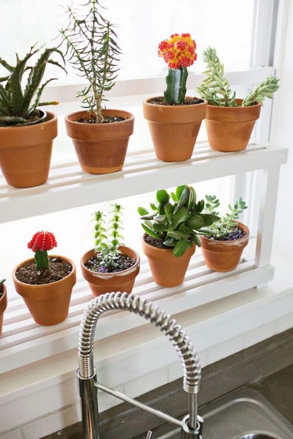 Bore Diy 20 Ideas Of Window Herb Garden For Your Kitchen Medium