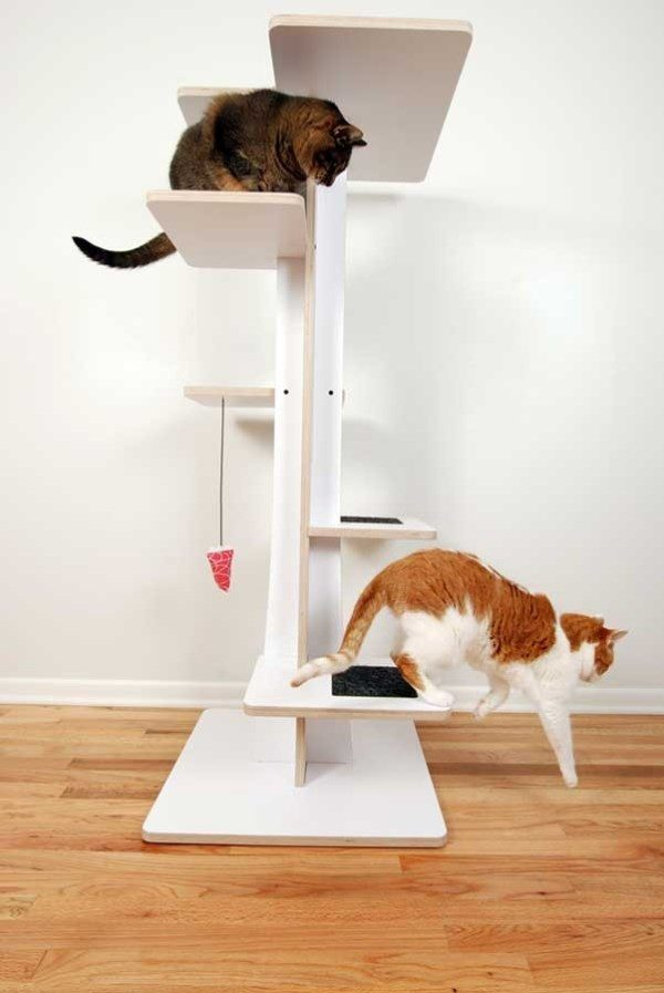 Bore Modern Pet Decor And Supplies For Your Furry Friend Medium