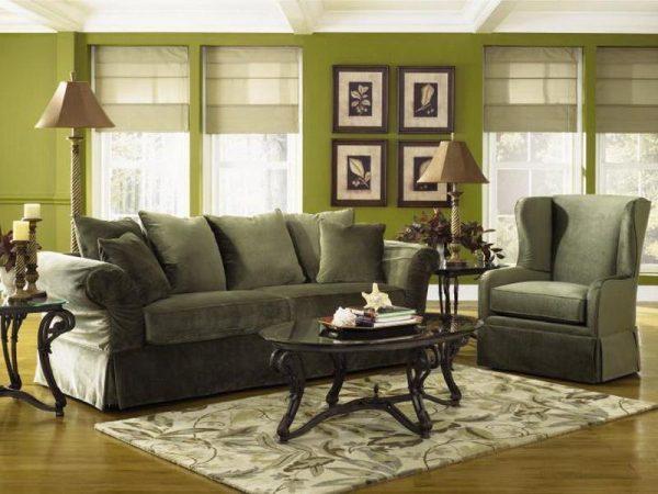 Browse Living Room Decorating Ideas Sage Green Couch Gorgeous On Medium