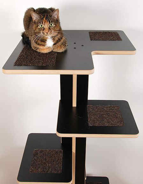 browse what your cat furniture says about you catster
