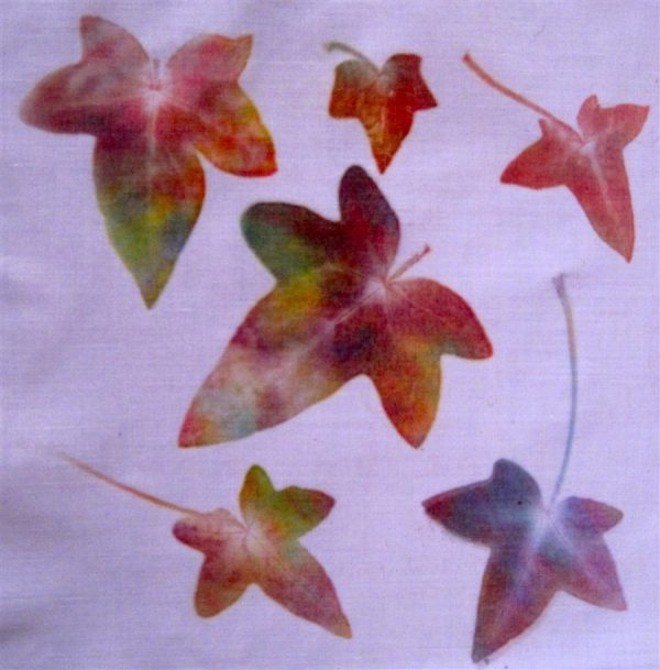 Clever Decorating Ideas Lovely Leaf Printing On Paper As Your Medium