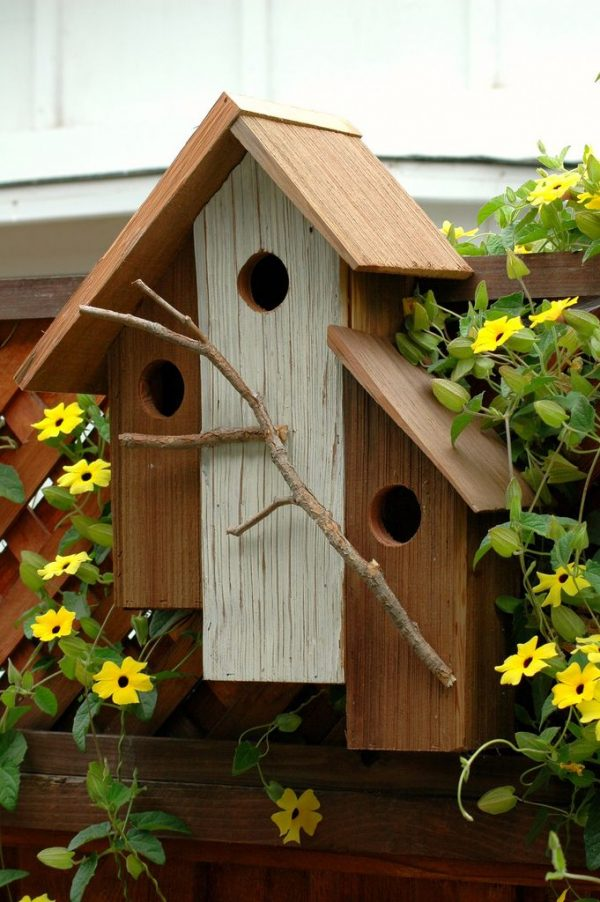 Clever Unique Bird Houses Woodworking Projects   Plans Medium