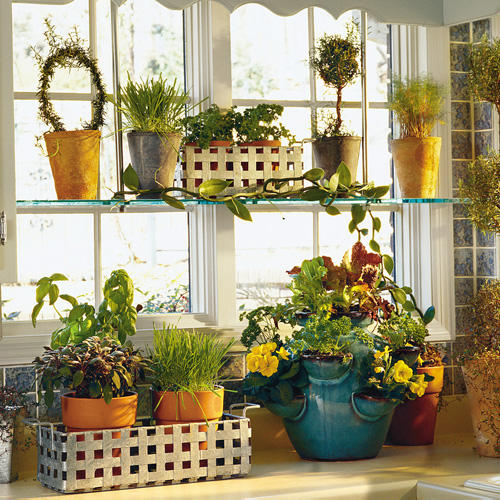 Collection Bring In The Herbssouthern Living Medium