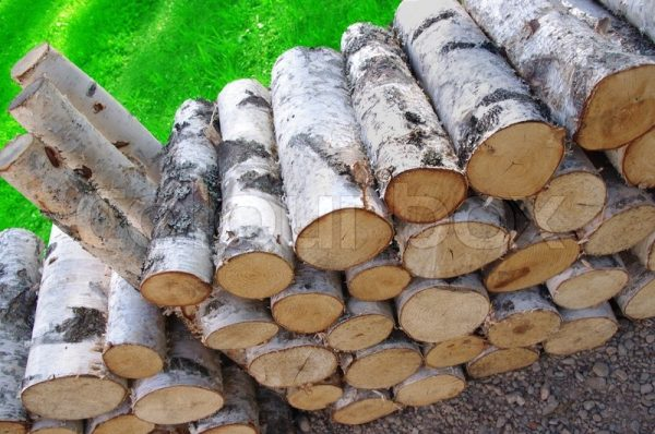 Creative A Stack Of Birch Firewood And Green Grassstock Photo Medium