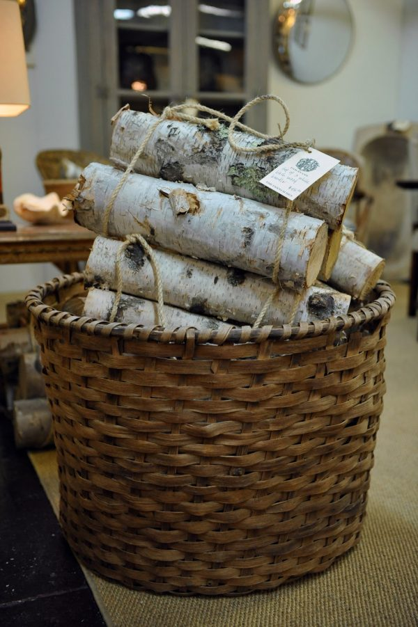 creative in your back pocket birch logs medium