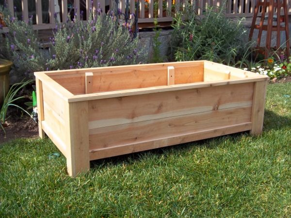 Example Of A Planters Amusing Cheap Planter Boxes Planting Boxes Medium