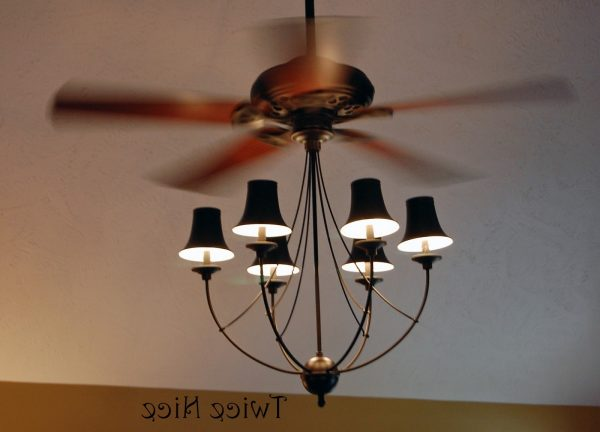 Explore Cool Ceiling Fans With Lights Campernel Designs Lights Medium