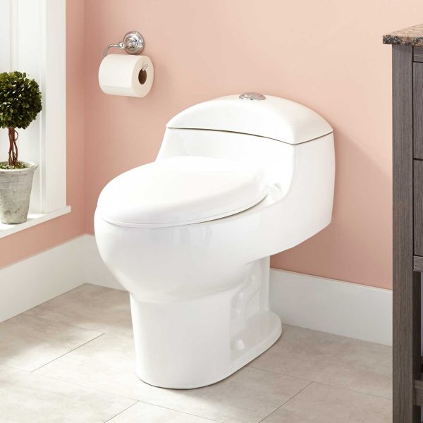 Explore Paladino Dualflush Onepiece Elongated Toilet Bathroom Medium