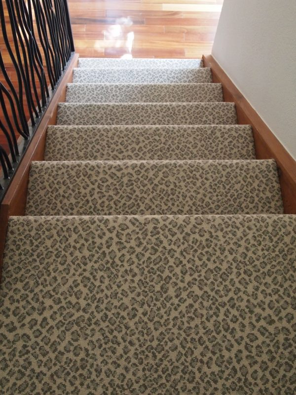 Fresh Animal Print Archives Schroeder Carpet Medium