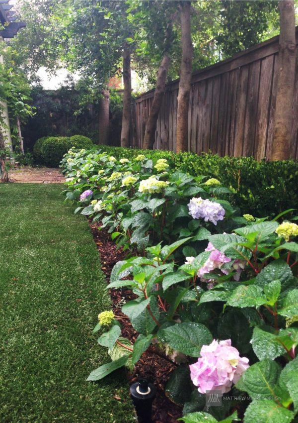 Fresh Landscape Ideas Best Solutions For Shadematthew Murrey Medium