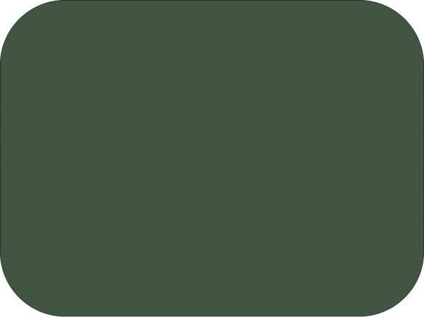 Fresh Sage Green Fondant Colors Medium