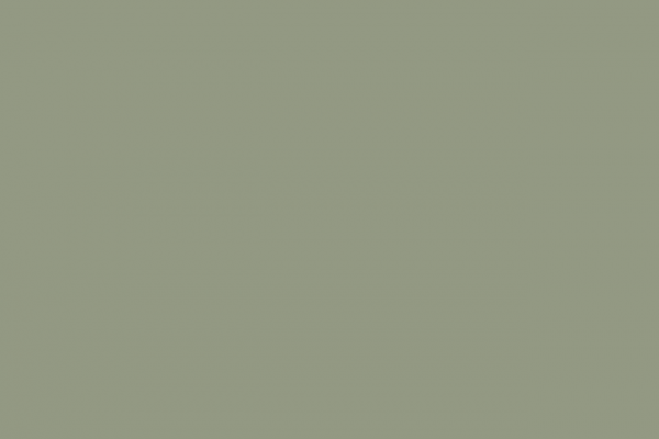 Fresh Sage Green Paint Color Medium
