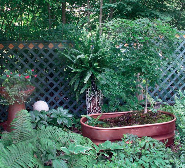 Galvanized Planters Modern Casual Garden Decoration Design Ideas Medium