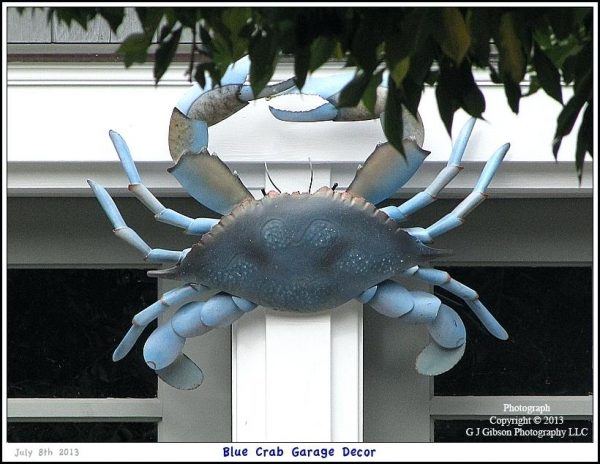 Get Blue Crab Decor  Administracionelectronicainfo Medium