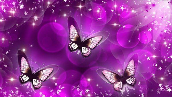 Get Cute Butterfly Backgrounds Wallpaper Cave Medium