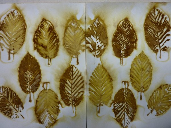 Get Eco Prints On Paper Leaves Out Of The Freezer Threadborne Medium