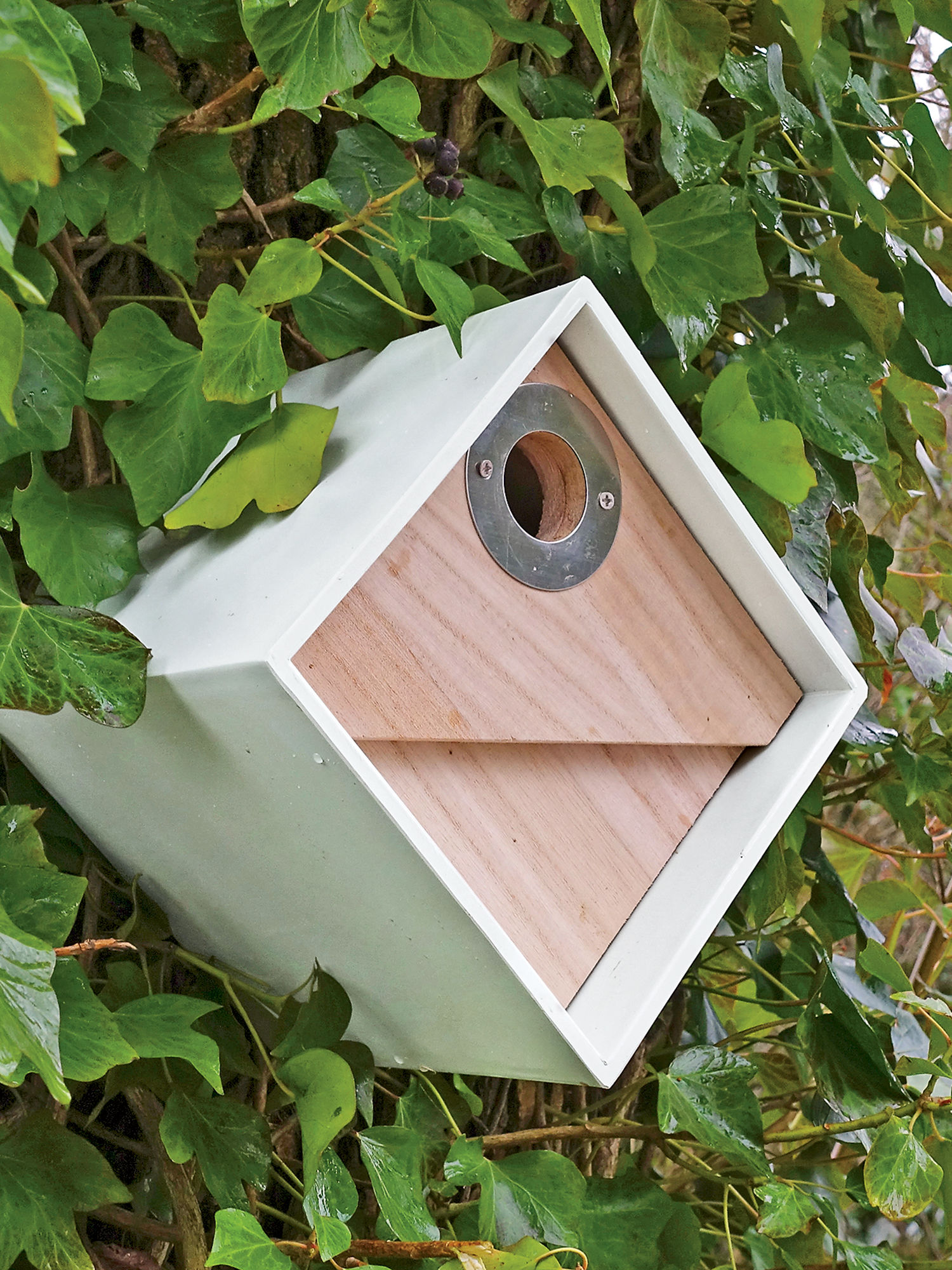 innovative cool bird houses bird box modern birdhouse for