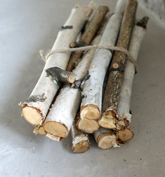 Inspiration 15 Birch Sticks Birch Log White Birch Branches By Medium