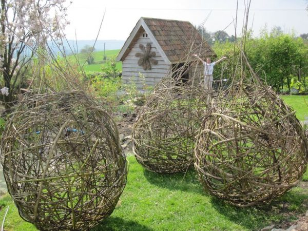 Inspiration 271 Best Images About Willow On Gardens Medium