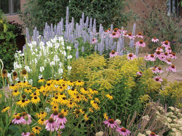 Inspiration Perennial Garden Ideas Plan Top Design With And On Flower Medium