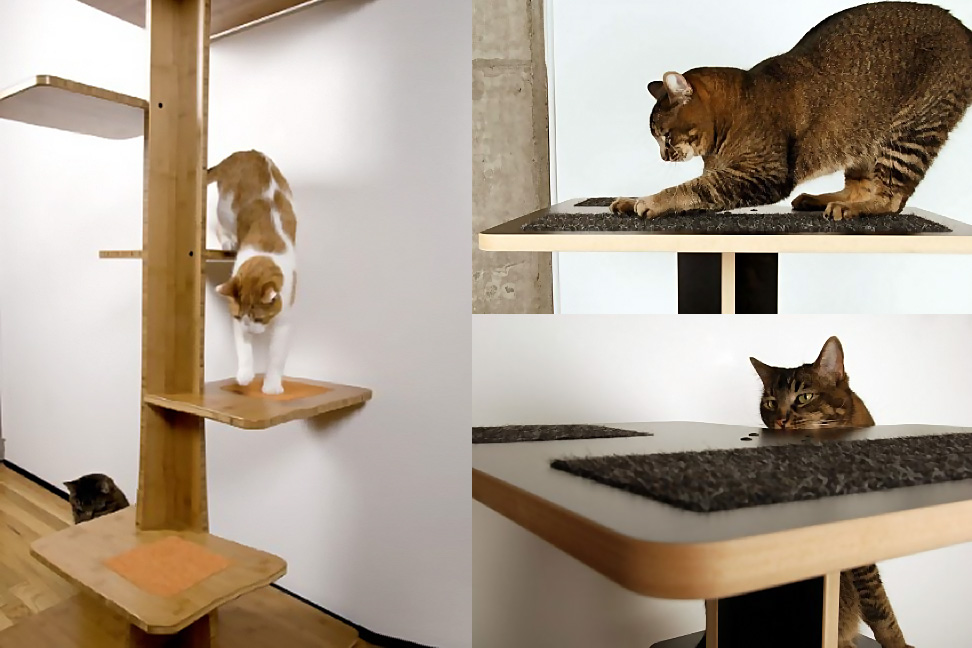 inspiration spoil your lovely cats with contemporary cat furniture