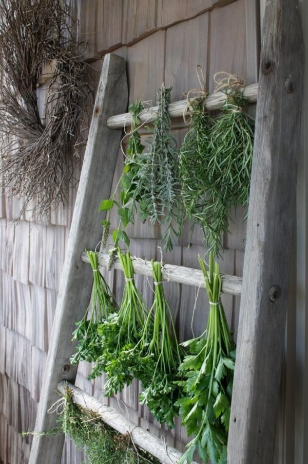 Inspirational 10 Easy Pieces Herb Drying Racks Gardenista Medium
