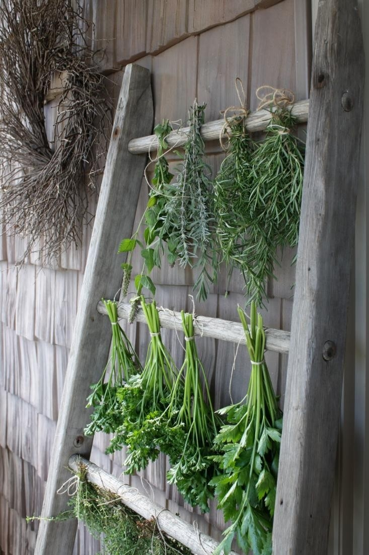 inspirational 10 easy pieces herb drying racks gardenista
