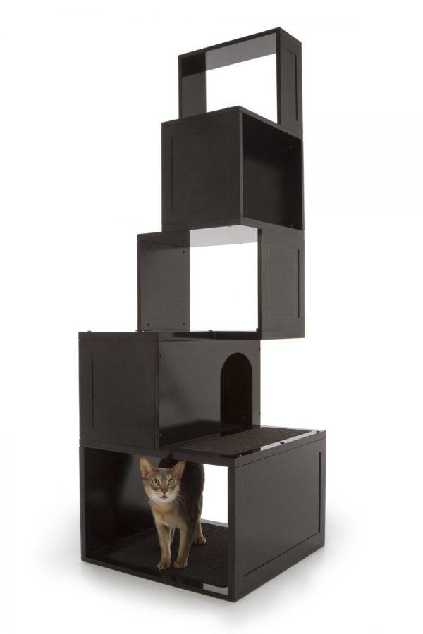 Inspirational 5 Ways To Hide Cat Hangouts Room   Bath Medium