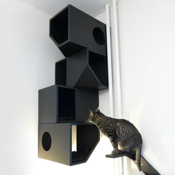 Inspirational Catissa  Modern Cat Furniture By Mojorno Medium