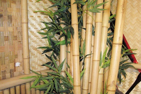inspirational go eco friendly with bamboo interior designs