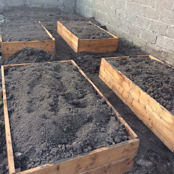 Looking Best Buy Raised Beds At Best Online Prices In Ireland Medium