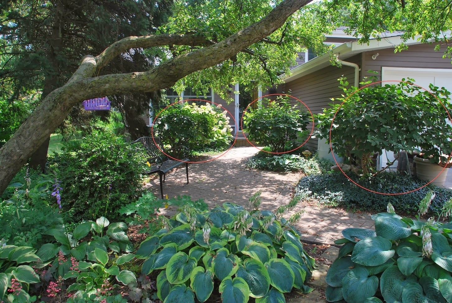 looking curbside landscape ideas  bistrodre porch and landscape ideas