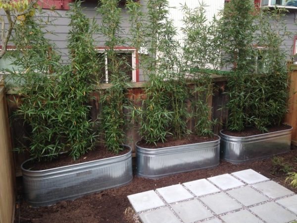 Metal Planters Galvanized Raised Beds Contemporary Medium