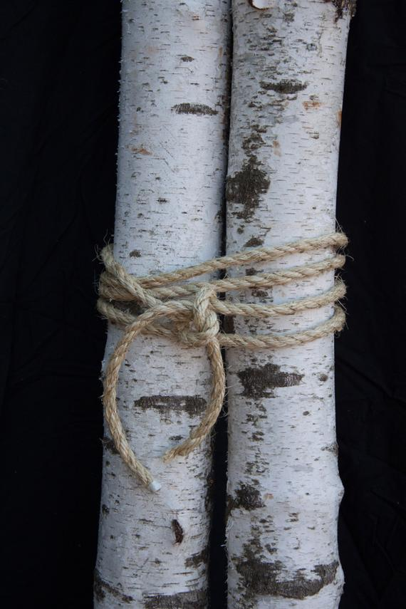 Perfect Real Birch Logs 4 5 Diameter White Birch Logs Medium