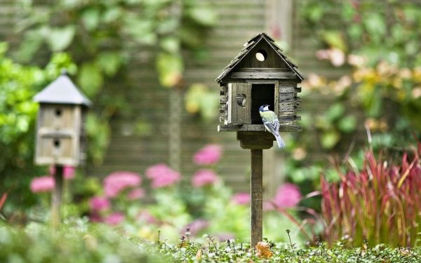 Perfect Why You Need A Bird House Or Two In Your Garden  And Medium