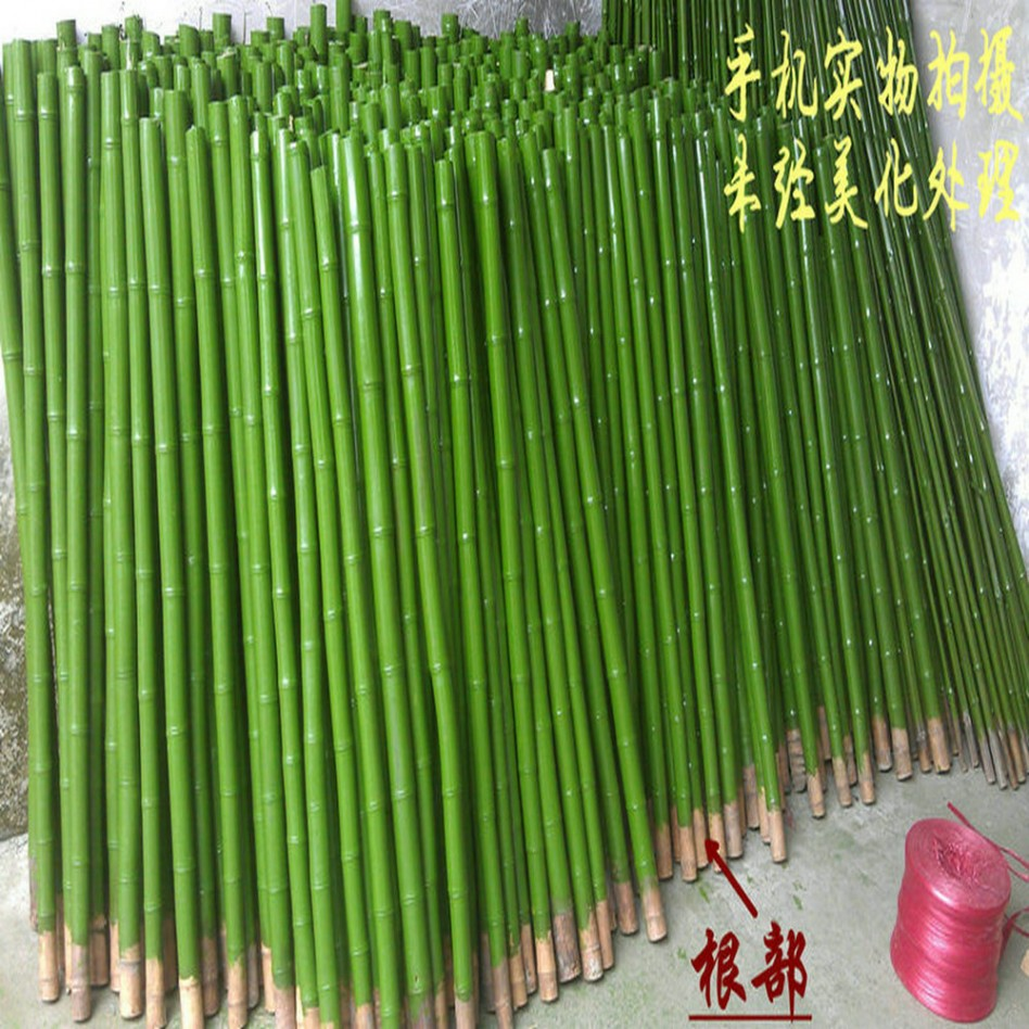 popular decorating ideas great images of green painted bamboo