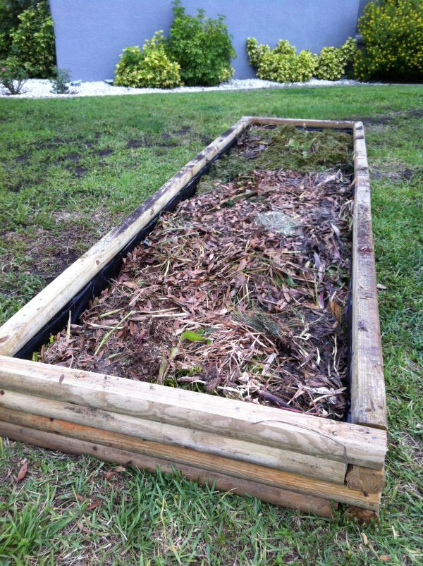 Popular Timber For Raised Vegetable Beds Talentneedscom Medium