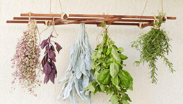 Search Hanging Herb Drying Rack Medium
