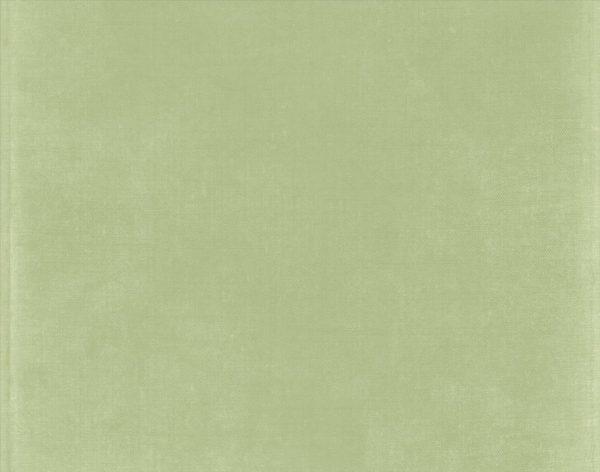 Search Sage Green Colorneiltortorellacom Medium