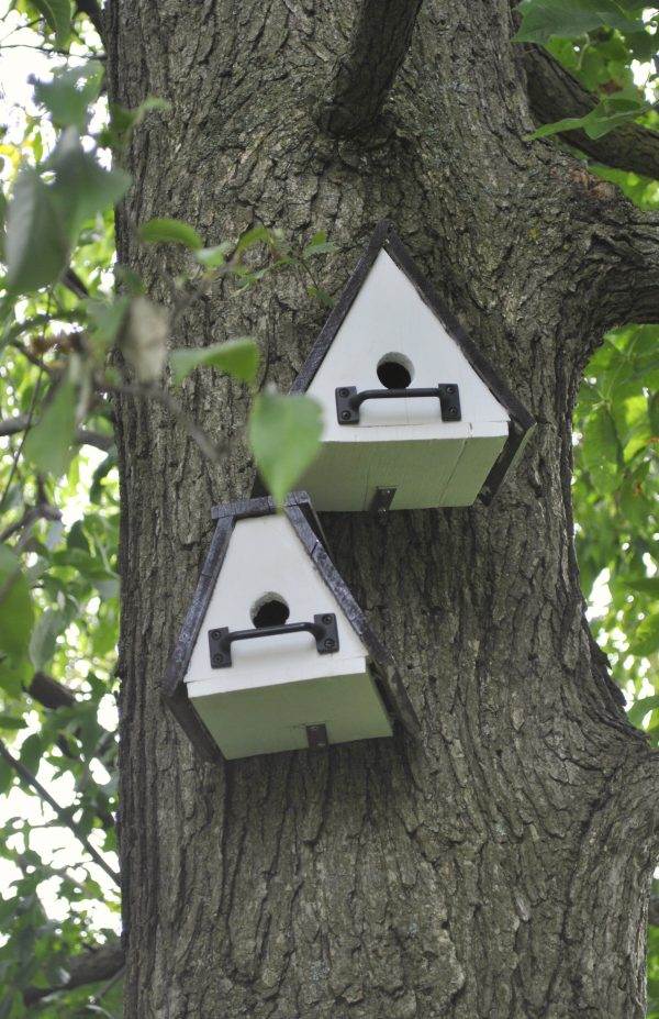 Simply Unique Bird Houses Plansbird Cages Medium