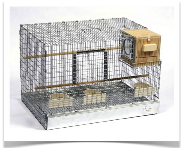 Simply Where To Buy Bird Breeding Suppliesbird Cages Medium
