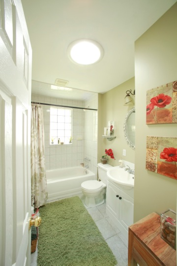 Style Bathroom Skylightsgallery Medium