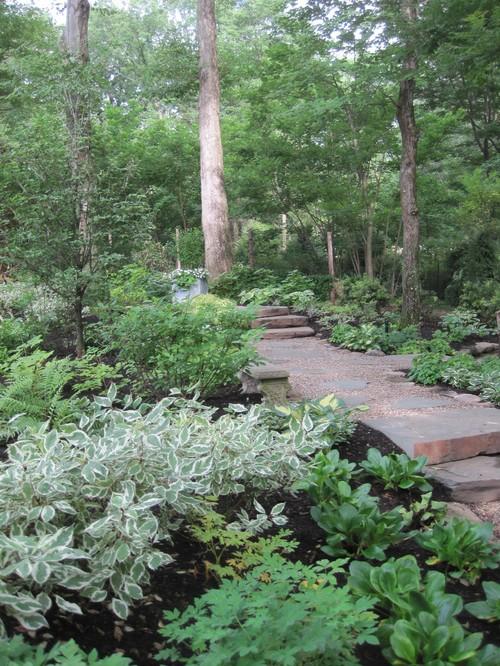 Style Garden Design Landscaping Ideas Shady Areas Home Design Medium