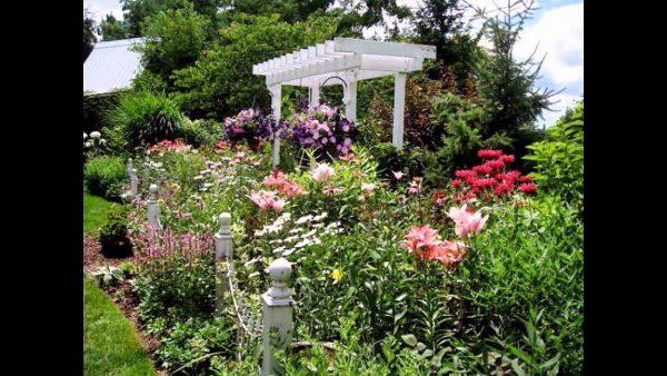 Style The Best Cottage Garden Flowers 2016 Youtube Medium