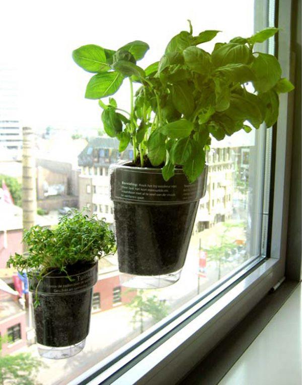 Style This Planter Really Sucks  Urban Gardens Medium