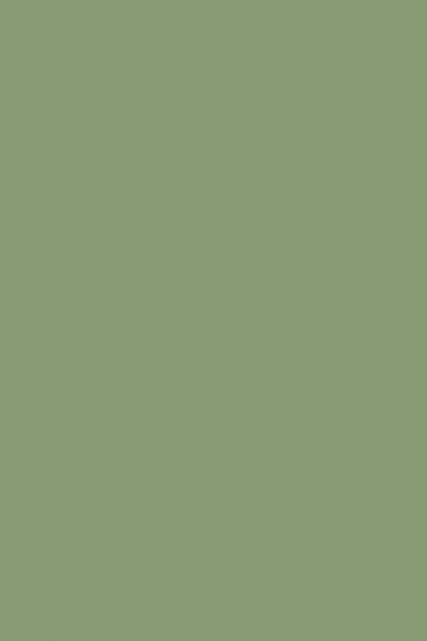 Tips 25  Best Ideas About Sage Green Walls On Sage Medium